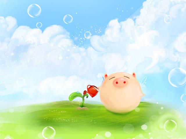 属猪的今年运势:属猪今年运势不好怎幺改善