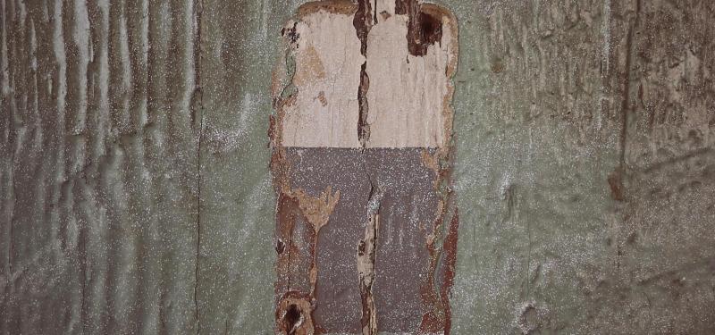 木命什么颜色最旺 属木的人忌讳什么颜色