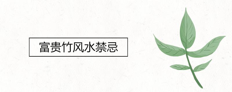 富贵竹风水禁忌