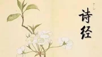 诗经中适合属鼠女宝宝的名字有哪些