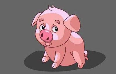 金猪年是哪年 金猪人性格怎么样