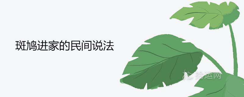 民间传说斑鸠入室的预言是什么
