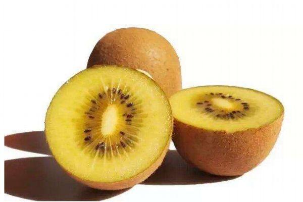 孕妇可以吃黄心猕猴桃吗 什么人不能吃黄心猕猴桃呢