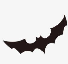 蝙蝠飞到家里是什么预兆?蝙蝠飞到家里怎么赶出去?