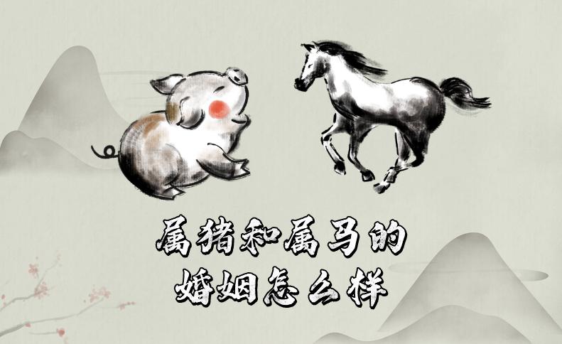 十二生肖中属猪和属马的婚姻怎么样