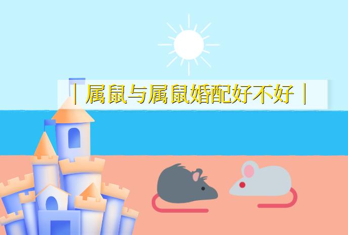 从属相看属鼠与属鼠婚配好不好